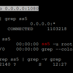 Cách Fake IP để chơi game với socks5 proxy